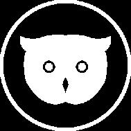 CTA owl